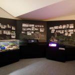 Vorstellung der einzelnen Teilprojekte mithilfe von Informationswänden, Teil 1